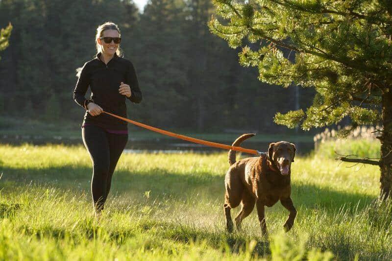 Ruffwear Roamer Leash hundkoppel hos Hundliv