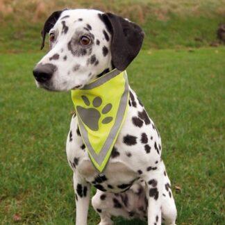 Trixie säkerhetsscarf