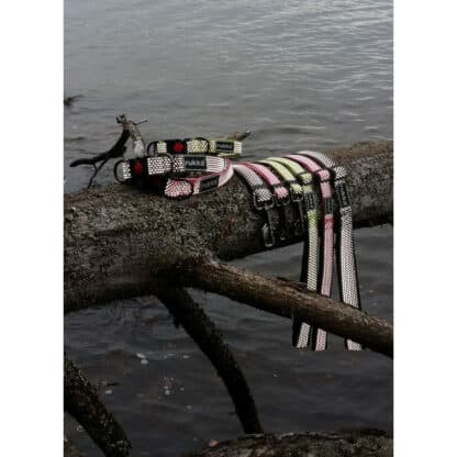 Rukka star hundhalsband